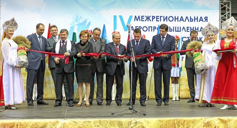 китайские теплицы в челябинской области