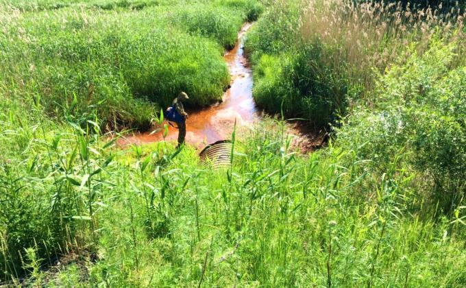 «Газпром переработку» обвиняют в отравлении Оби токсинами