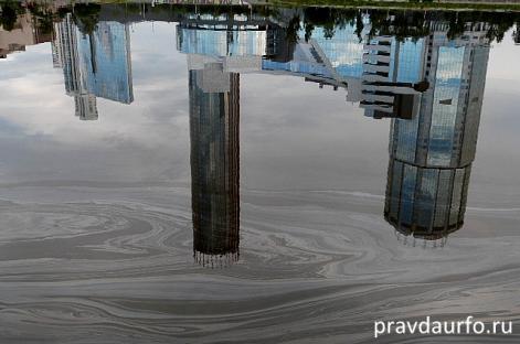 Загрязнением Городского пруда в Екатеринбурге занялась прокуратура