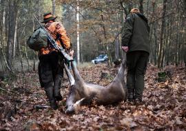 Браконьеры организовали 150 нелегальных охот в Курганской области