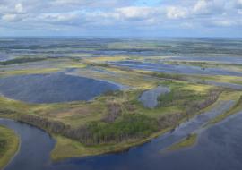 Структура «ЛУКОЙЛа» незаконно использовала ресурсы Оби для месторождений в ЯНАО
