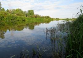Белоярский МУП попался на сбросе стоков в Пышму