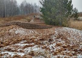 Прокуратура нашла незаконную свалку отходов «Птицефабрики Среднеуральская»