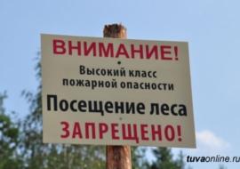 В Челябинской области объявили о пожарной опасности