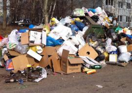 Свердловская прокуратура проверит законность доплат за содержание контейнерных площадок