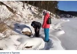 Челябинские общественники заявили о новом сливе нечистот в Тургояк