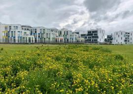 В Екатеринбурге построят научно-технологический центр за 24 миллиарда