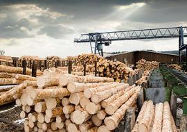 Тюменские котельные переведут на топливо из древесины