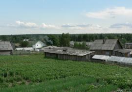 Зюганову, Жириновскому и Миронову доложили о давлении на кандидатов в Кондинском районе ХМАО
