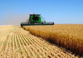 Фермеров ХМАО ориентировали на внутренний рынок