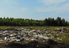 Администрация челябинского муниципалитета ответит в суде за свалку на сельхозземлях