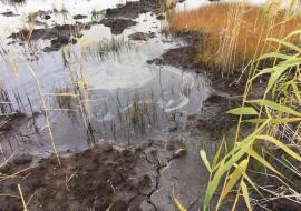 «Сургутнефтегаз» спустил нефть в водный объект ХМАО