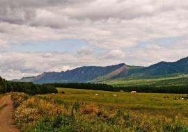 В Челябинской области отложили крупный экологический проект