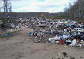 ОНФ выявил 277 незаконных свалок в Челябинской области