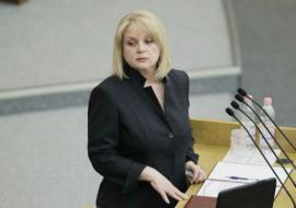Экс-член челябинского избиркома потребовал от Памфиловой уйти в отставку