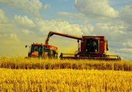 Челябинские аграрии увеличили урожай