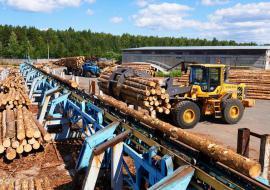 Лесную отрасль Югры ждет интеграция