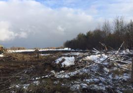 Экологи проследят за вывозом снега на нелегальные полигоны Сургута
