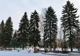 Население Екатеринбурга проголосует за территорию для благоустройства в 2021 году