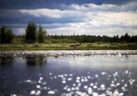 Власти ХМАО добавили 112 миллионов на развитие парка «Кондинские озера» и строительство полигона ТКО