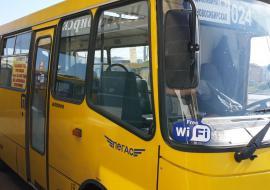Убытки екатеринбургских перевозчиков зависли в судах