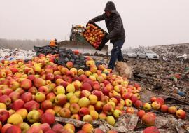 В Свердловской области уничтожили 12 тонн санкционных продуктов
