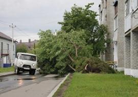 Ураган повредил десятки жилых домов в Заводоуковске