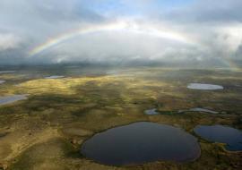 Уралнедра потратят 1,8 миллиарда на поиск газа в ЯНАО