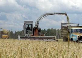 Свердловские аграрии нашли возможность сохранить объемы заготовки кормов
