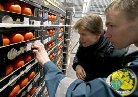 В Сургуте уничтожили 1,2 тонны санкционных продуктов