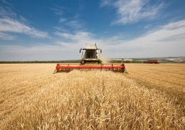 Тюменская область вышла в лидеры по уборке урожая
