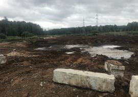 Прокуратура требует от «Птицефабрики «Среднеуральская» рекультивировать свалку помета на землях лесного фонда