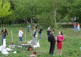 УрГУПС пожаловался в прокуратуру Екатеринбурга на высадку деревьев в парке