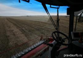 Курганские депутаты снизили стоимость сельхозземель