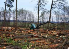 Департамент недропользования ХМАО уличили в нелегальной раздаче земель