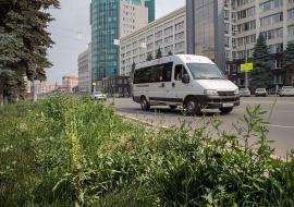 Депутаты указали Тефтелеву на «колхоз» в центре Челябинска