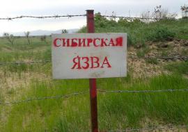 Захоронения сибирской язвы в ЯНАО остались без защиты