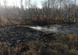 Экологи потребовали от Росприроднадзора и Минприроды проверить горящий полигон под Челябинском