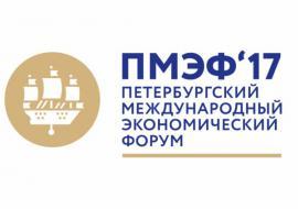 Дубровский летит на экономический форум за соглашениями по БРИКС и ШОС