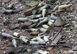 Мэрия Екатеринбурга пообещала убрать мусор из Городского пруда
