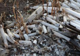 Прокуратура потребовала ликвидировать свалку ядовитых веществ в Челябинской области