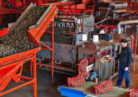 Крупнейшее предприятие АПК Тюменской области откроет новый завод в Упоровском районе
