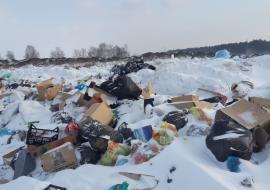 Прокуратура заставила власти муниципалитета Челябинской области убрать 35 свалок