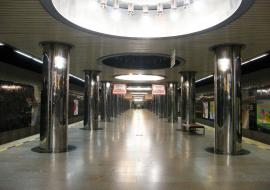 Человек спрыгнул на рельсы метро