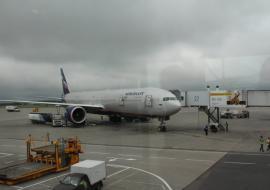«Аэрофлот» отменил два рейса в УрФО