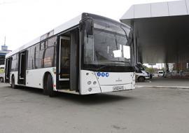 Врио главы Челябинска сообщила о заключении контрактов на закупку автобусов