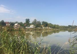 Челябинский пруд заливают канализационными стоками