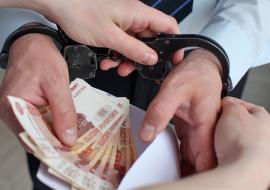 Правоохранители выявили в Челябинской области 696 коррупционных преступлений