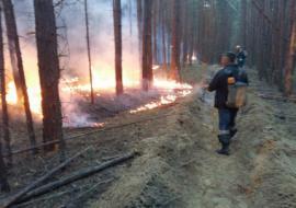 В Свердловской области финансирование тушения лесных пожаров увеличили до 194 миллионов