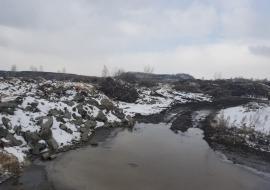 Активисты ОНФ потребовали привлечь к ответственности чиновников Котовой из-за сотен тонн мусора в Челябинске